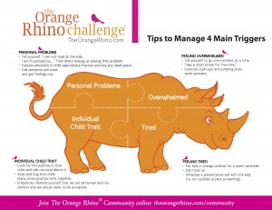 Orange Rhino 4 Main Triggers copy