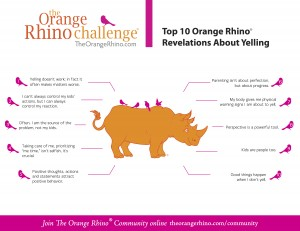 Orange Rhino Top 10 Revelations jpg
